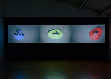 "Moataz Nasr, ""Merge and Emerge"", 2011, 3 video projections, 6'25'' chaque, en boucle, courtesy Galleria Continua, San Gimignano/BEijing/Le Moulin"