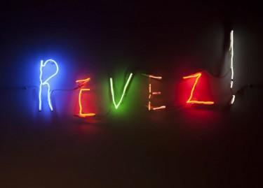 """Claude Lévêque, """"Rêvez !"""", 2008, néon multicolore, écriture Gilberte Lévêque. courtesy: l'artiste et kamel mennour, Paris, © ADAGP Paris"""